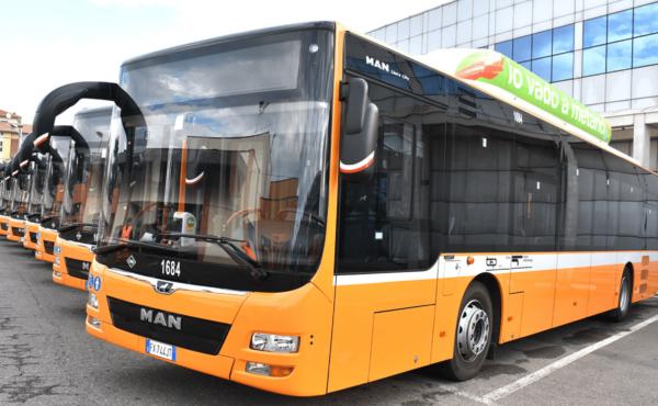 (Italiano) Linee bus e orari estivi